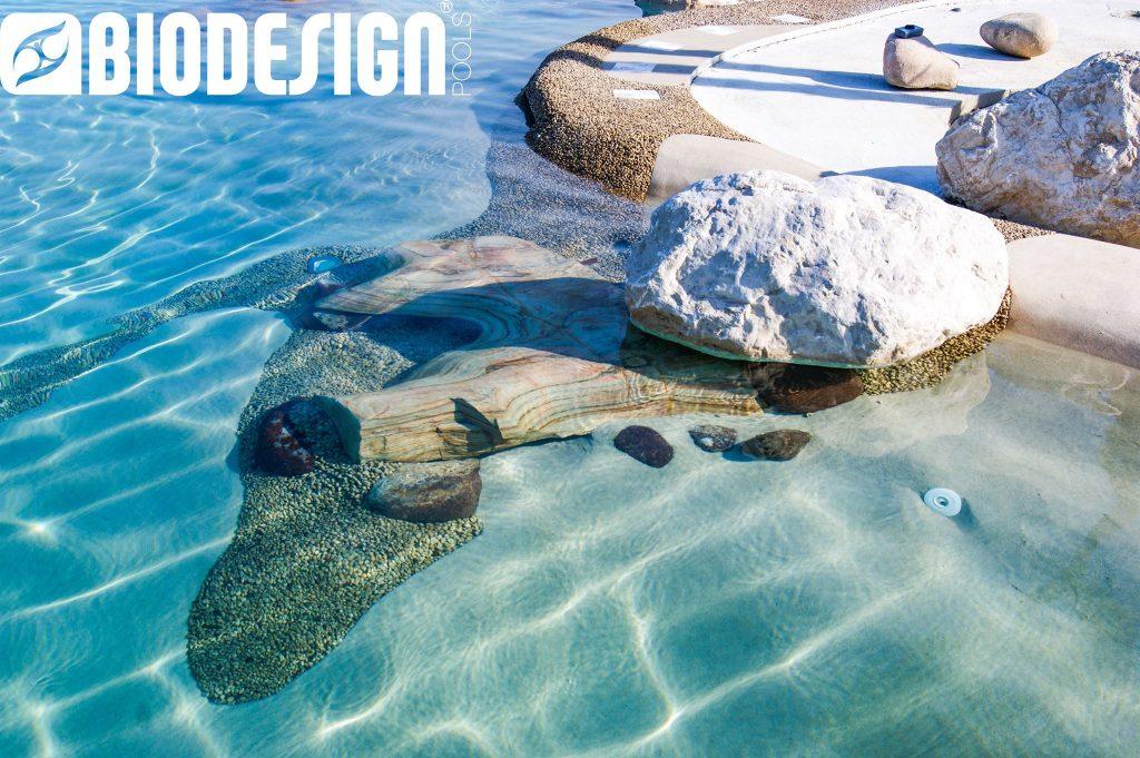 Biodesignpools2